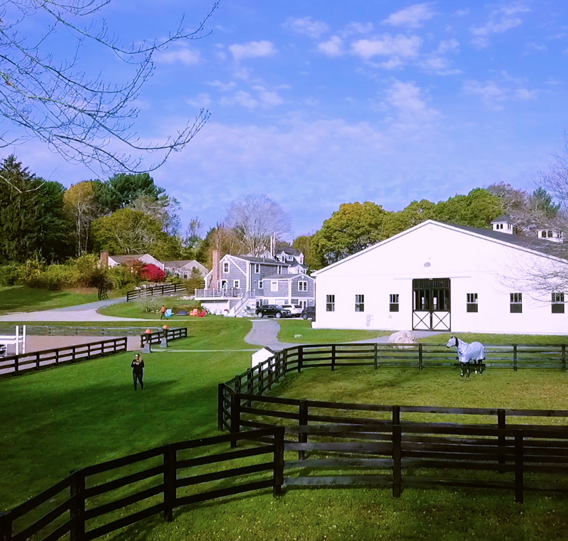 A BarnManager farm with a horse in a pen