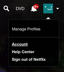 Netflix Profile Manager